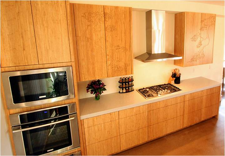 Bamboo cabinets green cabinets custom cabinets for Bamboo kitchen cabinets