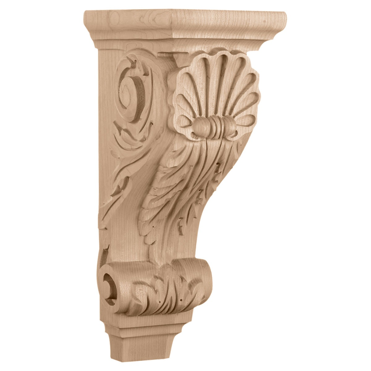 CORSH2 Medium Shell Corbel