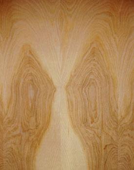 Wood Species Wood Varieties Custom Cabinet Wood